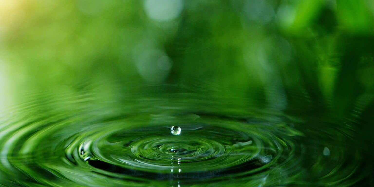 Dropping water in detail, spa and wellness concept. Shot on super macro lens, low depth of focus. Free space for text.